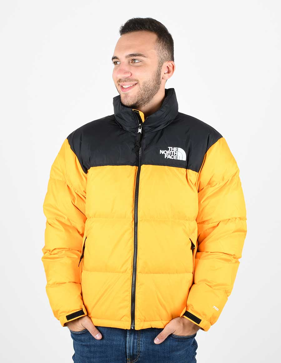 THE NORTH FACE NF0A3C8D56P