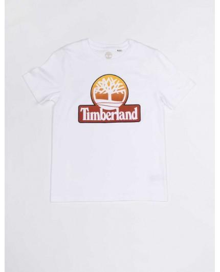 TIMBERLAND T25Q69 10B