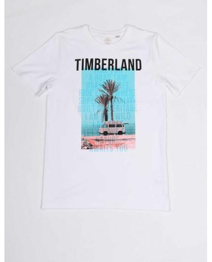 TIMBERLAND T25Q72 10B